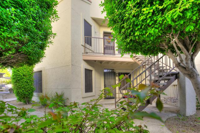 7101 W Beardsley Road #942, Glendale, AZ 85308 (MLS #5867298) :: Arizona 1 Real Estate Team