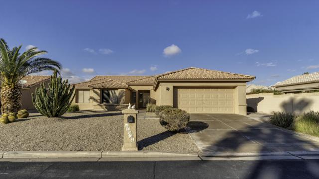 10234 E Champagne Drive, Sun Lakes, AZ 85248 (MLS #5867306) :: Keller Williams Realty Phoenix