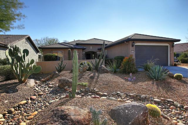 6505 W Saratoga Way, Florence, AZ 85132 (MLS #5867346) :: The Daniel Montez Real Estate Group