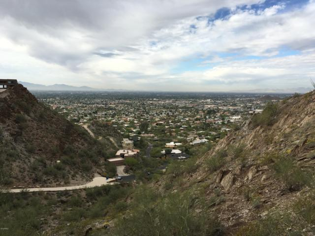 1860 E Cinnabar Avenue, Phoenix, AZ 85020 (MLS #5867349) :: Yost Realty Group at RE/MAX Casa Grande