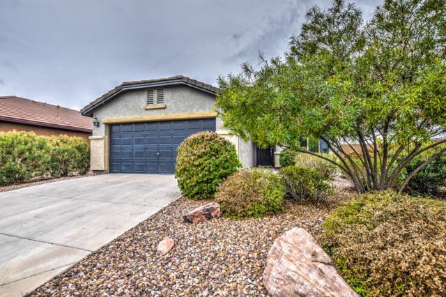 3062 N Daisy Drive, Florence, AZ 85132 (MLS #5867383) :: The Daniel Montez Real Estate Group
