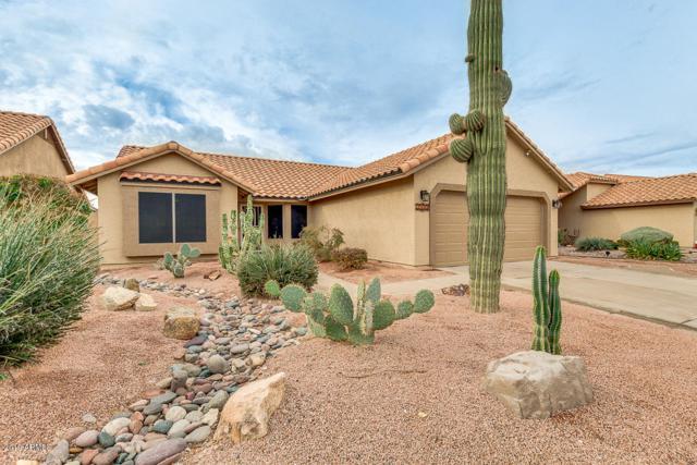 2535 E Taxidea Way, Phoenix, AZ 85048 (MLS #5867449) :: Keller Williams Realty Phoenix