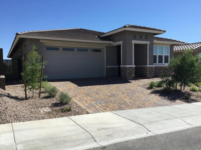 30853 N 137TH Avenue, Peoria, AZ 85383 (MLS #5867459) :: RE/MAX Excalibur
