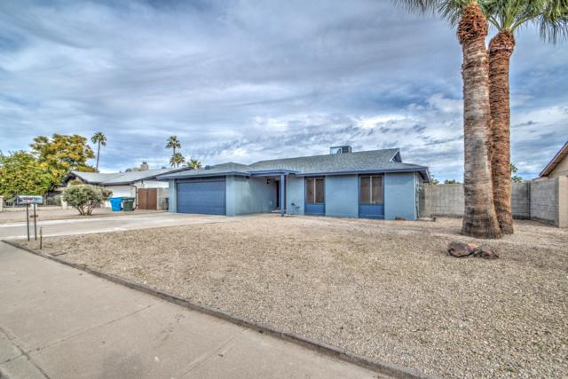 13233 N 30TH Street, Phoenix, AZ 85032 (MLS #5867486) :: Yost Realty Group at RE/MAX Casa Grande