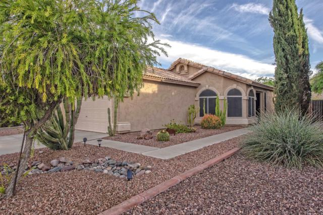 22427 N 19TH Way, Phoenix, AZ 85024 (MLS #5867590) :: The Laughton Team