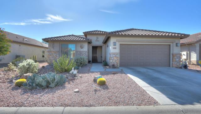 5199 W Buckskin Drive, Eloy, AZ 85131 (MLS #5867609) :: Yost Realty Group at RE/MAX Casa Grande