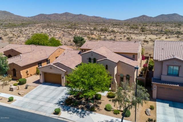 32007 N 15TH Drive, Phoenix, AZ 85085 (MLS #5867657) :: The Pete Dijkstra Team