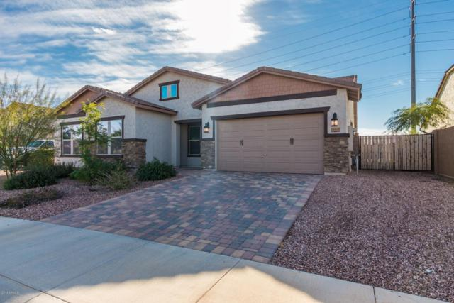 18243 W Monterosa Street, Goodyear, AZ 85395 (MLS #5867709) :: The Everest Team at My Home Group
