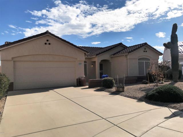 22605 N Cabana Lane, Sun City West, AZ 85375 (MLS #5867762) :: Team Wilson Real Estate