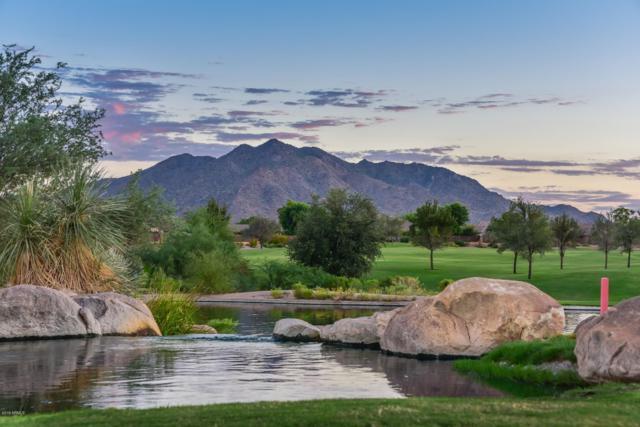 6668 S Cartier Drive, Gilbert, AZ 85298 (MLS #5867878) :: The Jesse Herfel Real Estate Group