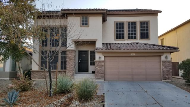 18191 N Cook Drive, Maricopa, AZ 85138 (MLS #5867896) :: The Everest Team at My Home Group
