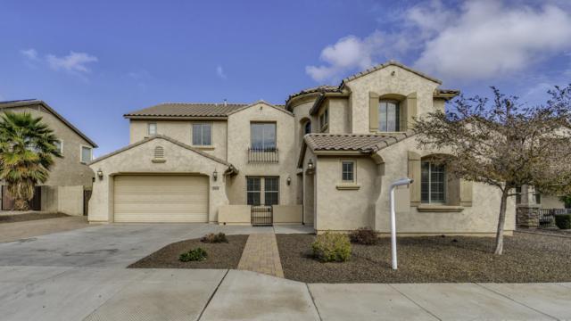 18140 W Ruth Avenue, Waddell, AZ 85355 (MLS #5867933) :: Phoenix Property Group