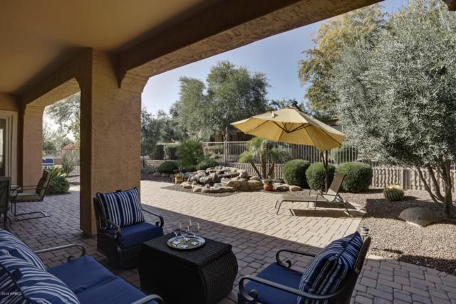 27258 N Makena Place, Peoria, AZ 85383 (MLS #5867964) :: The Everest Team at My Home Group