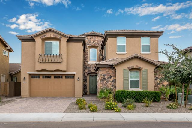 2171 E Geronimo Street, Chandler, AZ 85225 (MLS #5867993) :: neXGen Real Estate