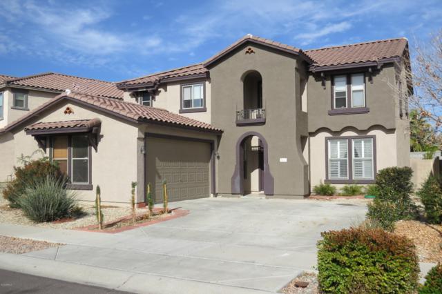 18410 W Stinson Drive, Surprise, AZ 85374 (MLS #5868015) :: Yost Realty Group at RE/MAX Casa Grande