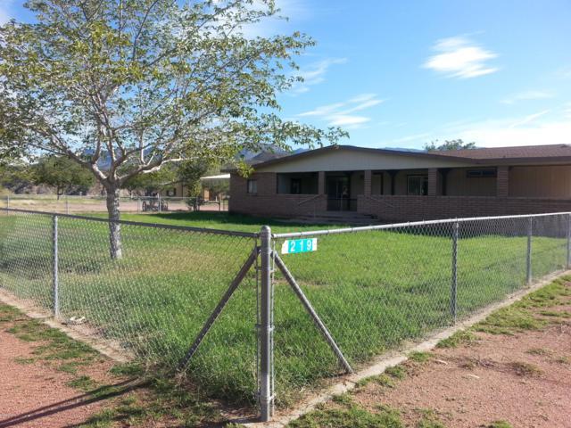 219 N Dessie Lane, Tonto Basin, AZ 85553 (MLS #5868049) :: Conway Real Estate