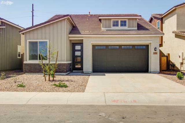 3050 S Eucalyptus Place, Chandler, AZ 85286 (MLS #5868076) :: The Daniel Montez Real Estate Group