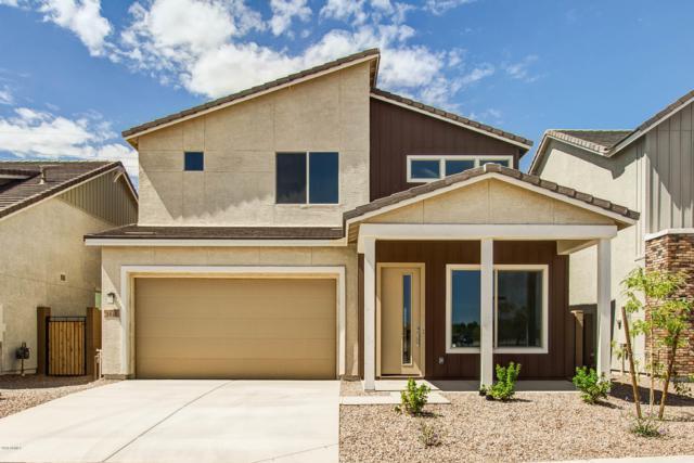 3040 S Eucalyptus Place, Chandler, AZ 85286 (MLS #5868080) :: The Daniel Montez Real Estate Group