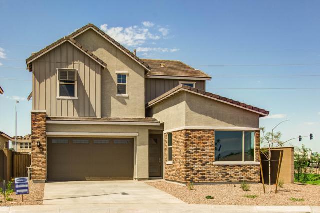 3030 S Eucalyptus Place, Chandler, AZ 85286 (MLS #5868083) :: The Daniel Montez Real Estate Group