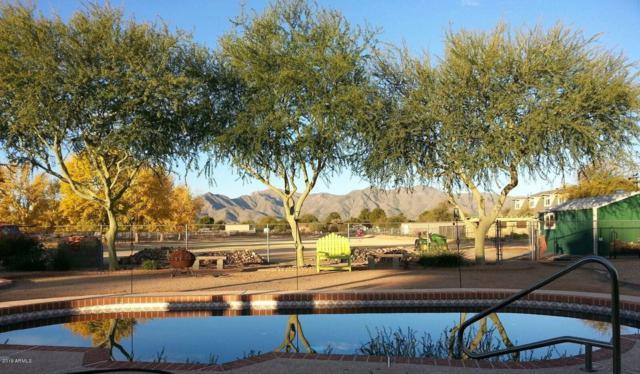 7710 N 185TH Avenue, Waddell, AZ 85355 (MLS #5868100) :: Phoenix Property Group