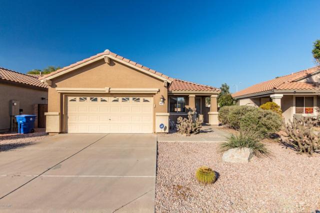 6650 W Megan Street, Chandler, AZ 85226 (MLS #5868131) :: Arizona 1 Real Estate Team