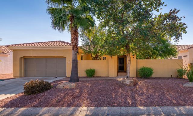 13753 W Figueroa Drive, Sun City West, AZ 85375 (MLS #5868139) :: The Laughton Team