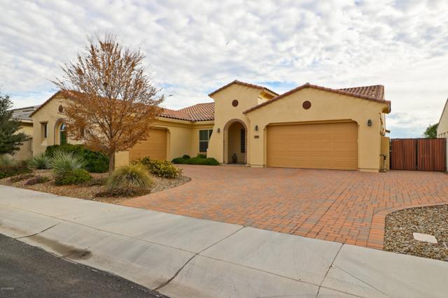 2021 N 159TH Avenue, Goodyear, AZ 85395 (MLS #5868179) :: The Sweet Group