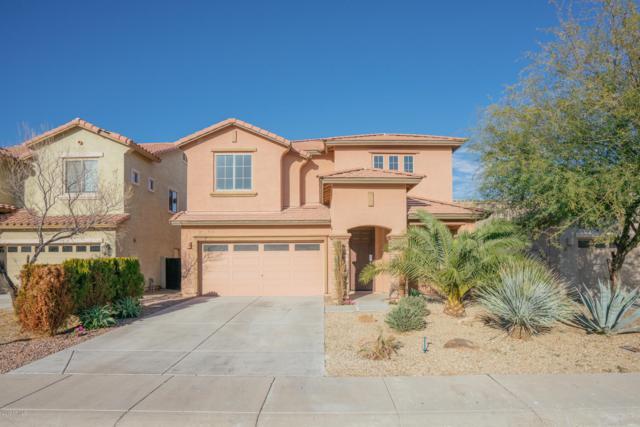 958 E Corrall Street, Avondale, AZ 85323 (MLS #5868184) :: The Laughton Team