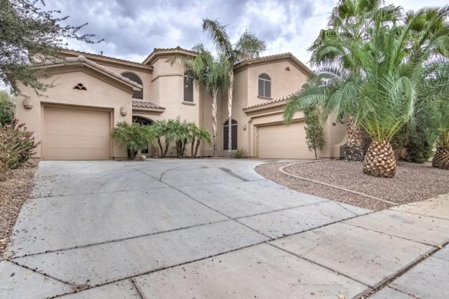 4529 S Ranger Trail, Gilbert, AZ 85297 (MLS #5868236) :: The Jesse Herfel Real Estate Group