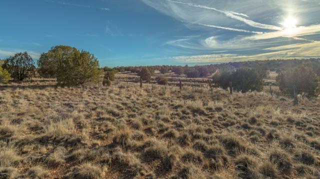 0 N Upper Verde Trail, Paulden, AZ 86334 (MLS #5868271) :: Yost Realty Group at RE/MAX Casa Grande