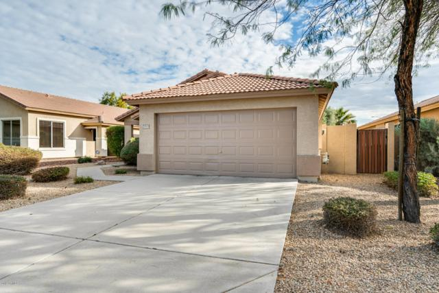 20311 N 82ND Lane, Peoria, AZ 85382 (MLS #5868276) :: The Laughton Team