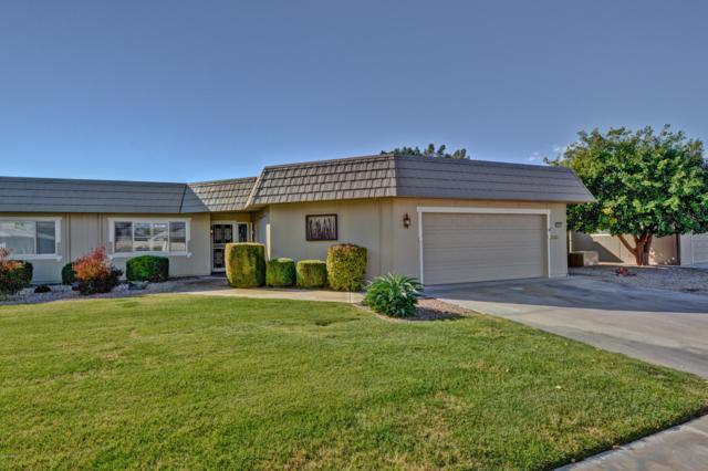 10433 W Campana Drive, Sun City, AZ 85351 (MLS #5868333) :: The Daniel Montez Real Estate Group