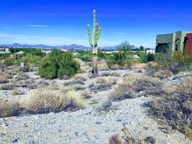 3916 E Melody Drive, Phoenix, AZ 85042 (MLS #5868410) :: The Daniel Montez Real Estate Group