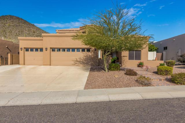 6022 W Robin Lane W, Glendale, AZ 85310 (MLS #5868419) :: Power Realty Group Model Home Center