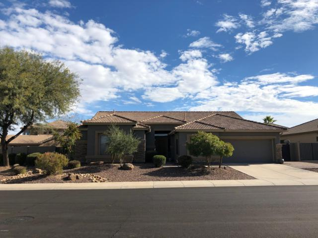 6671 S Crestview Drive, Gilbert, AZ 85298 (MLS #5868427) :: Team Wilson Real Estate