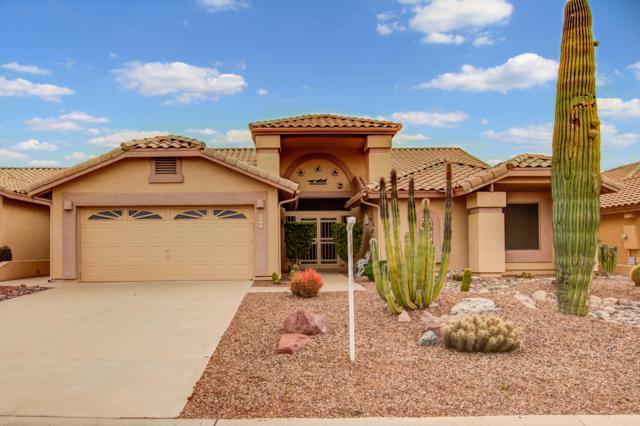 5369 S Hedgehog Drive, Gold Canyon, AZ 85118 (MLS #5868442) :: Revelation Real Estate