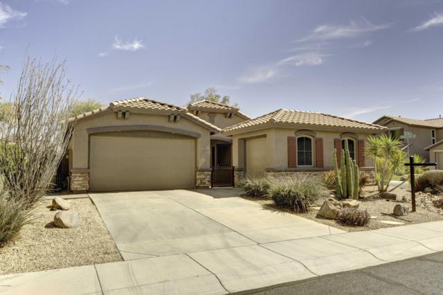 39517 N Gold Mine Lane, Phoenix, AZ 85086 (MLS #5868480) :: Revelation Real Estate