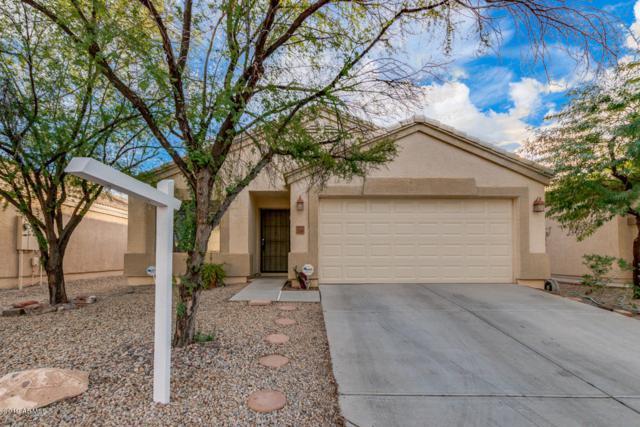 23691 N Desert Drive, Florence, AZ 85132 (MLS #5868481) :: The W Group