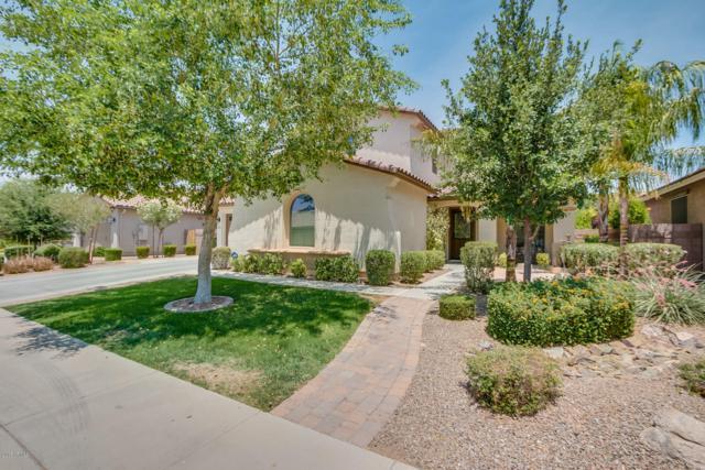 2444 E Sourwood Drive, Gilbert, AZ 85298 (MLS #5868518) :: The W Group