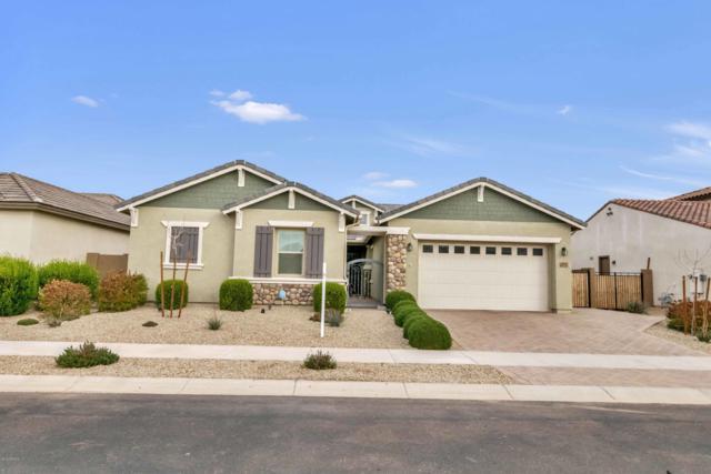 19710 E Peartree Lane, Queen Creek, AZ 85142 (MLS #5868558) :: Revelation Real Estate