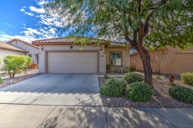 7293 W Pleasant Oak Way, Florence, AZ 85132 (MLS #5868592) :: Lifestyle Partners Team