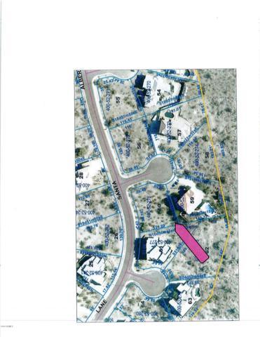 18281 W Santa Alberta Lane, Goodyear, AZ 85338 (MLS #5868626) :: The Garcia Group