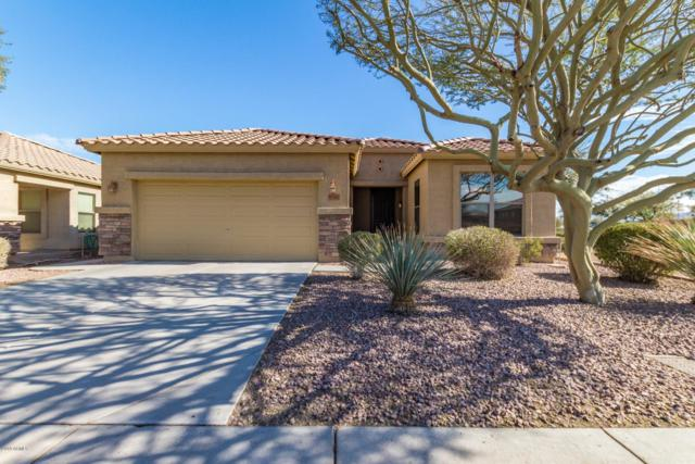 6119 S 43RD Drive, Laveen, AZ 85339 (MLS #5868648) :: neXGen Real Estate