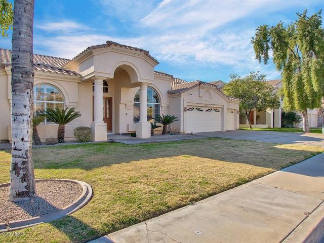 5751 W Gail Drive, Chandler, AZ 85226 (MLS #5868716) :: Relevate | Phoenix