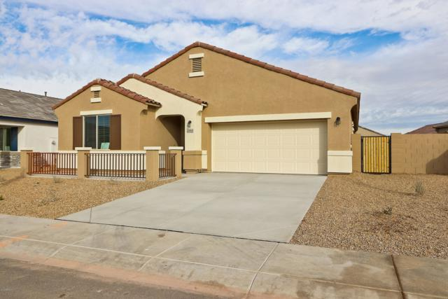 40950 W Crane Drive, Maricopa, AZ 85138 (MLS #5868717) :: The Pete Dijkstra Team