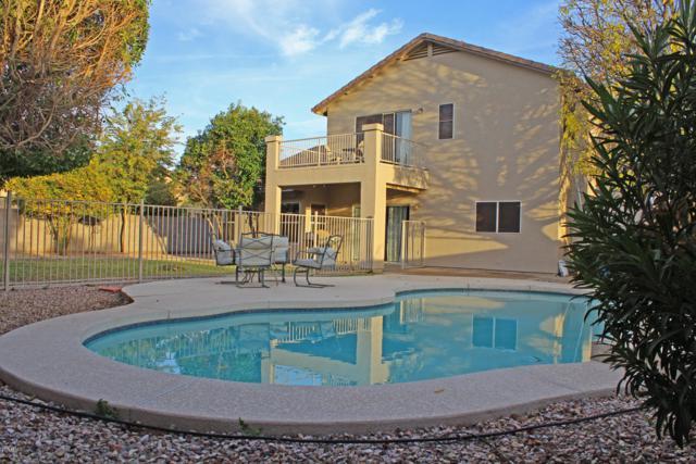 1200 E Carla Vista Drive, Gilbert, AZ 85295 (MLS #5868757) :: Revelation Real Estate