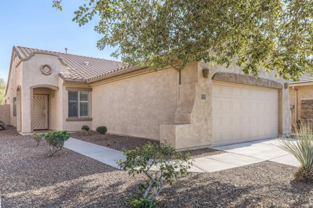 10071 E Rugged Mountain Drive, Gold Canyon, AZ 85118 (MLS #5868817) :: The Laughton Team