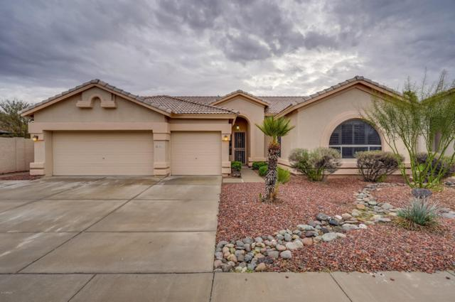 2911 N 113TH Avenue, Avondale, AZ 85392 (MLS #5868857) :: The Results Group