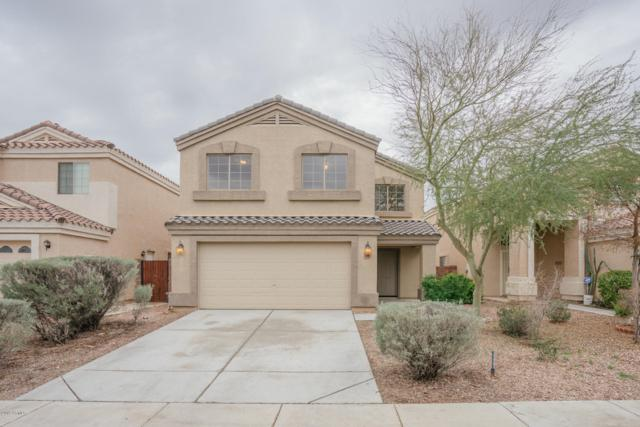 23405 W Mohave Street, Buckeye, AZ 85326 (MLS #5868862) :: Conway Real Estate