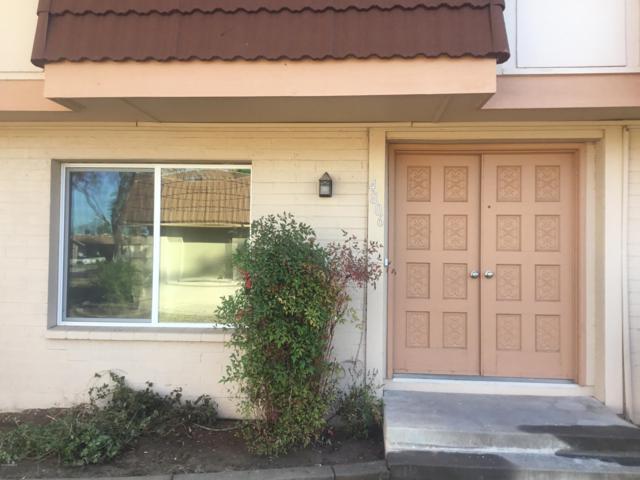 4806 S Juniper Street, Tempe, AZ 85282 (MLS #5868863) :: Conway Real Estate